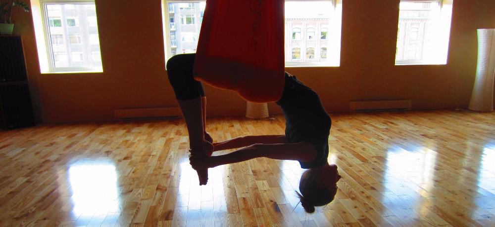 YogaTribes   Enseignant de Yoga   Montreal